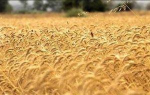 2000 hektar arazy golestan 01