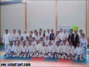 Karate Gol01
