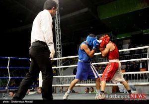 Boxing Golestan