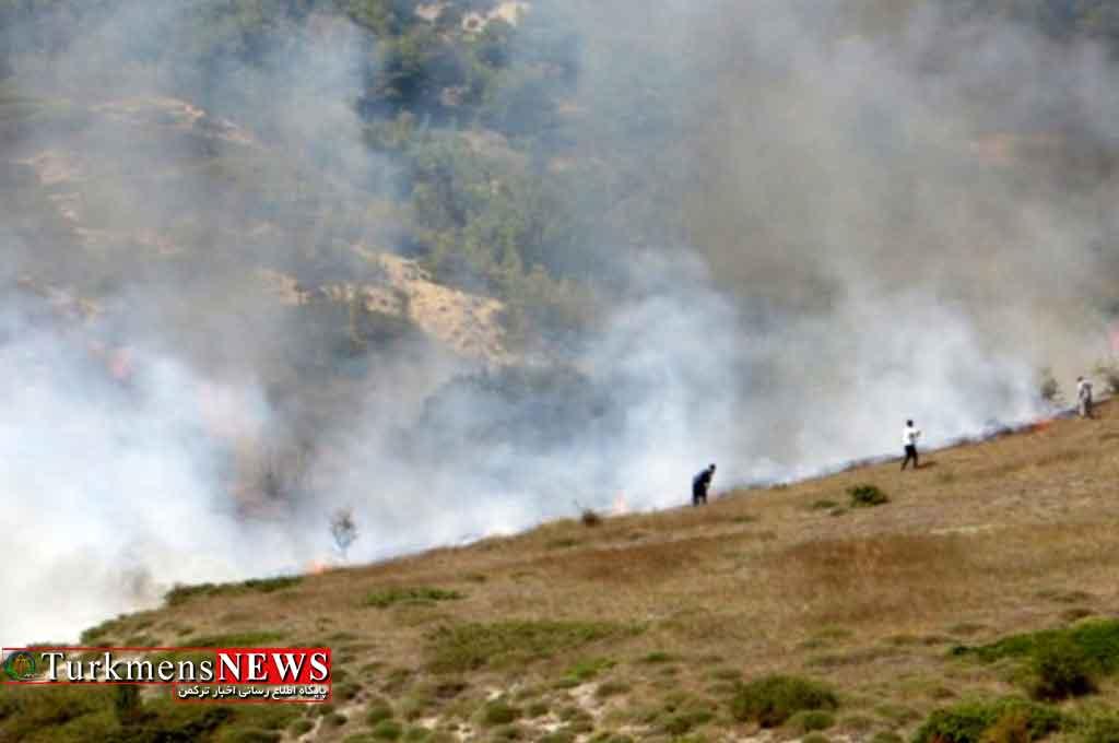 آتش سهل انگاری به 50 هکتار عرصه مرتعی کردکوی خسارت زد
