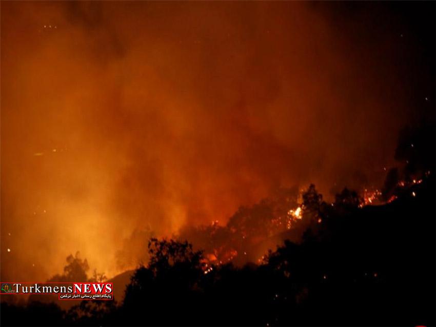 آتش سوزی در منطقه حفاظت شده میانکاله
