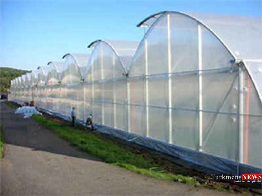 احداث سه شهرک گلخانه ای در گنبدکاووس