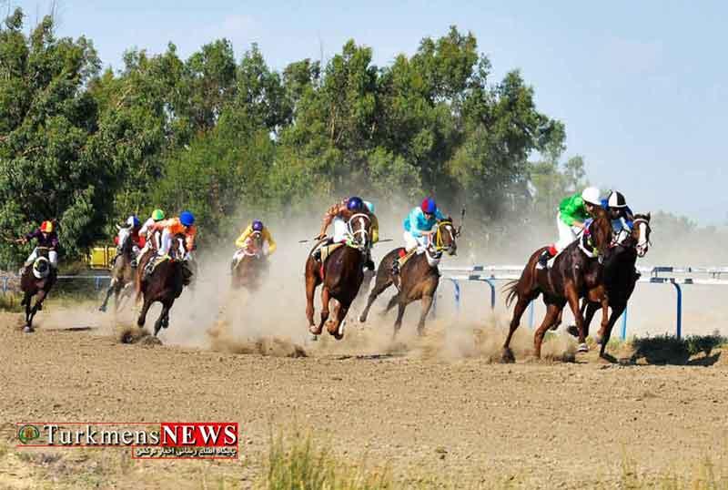 کورس اسبدوانی تابستانه بندرترکمن برگزار می شود