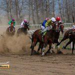 هفته پانزدهم 2 150x150 - روز دوم هفته پانزدهم مسابقات اسبدوانی زمستانه گنبدکاووس برگزار شد+عکس