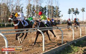 1 1 300x188 - روز دوم هفته چهاردهم مسابقات اسبدوانی زمستانه گنبدکاووس برگزار شد+عکس