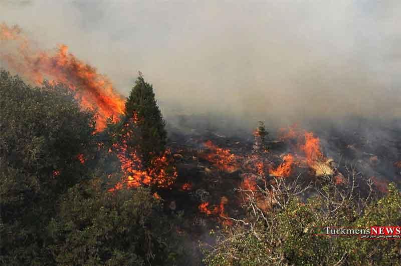 اعزام نیروهای شرق گلستان برای مقابله با حریق جنگل
