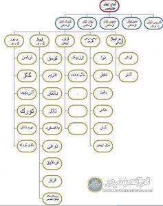 3 237x300 - تاریخچهای بر اوزبیکها (ازبک)
