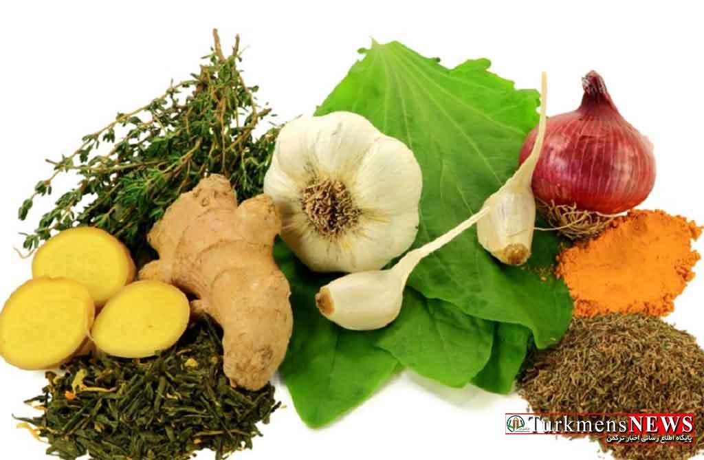 بهترین آنتی بیوتیک های طبیعی برای فصل پاییز را بشناسید