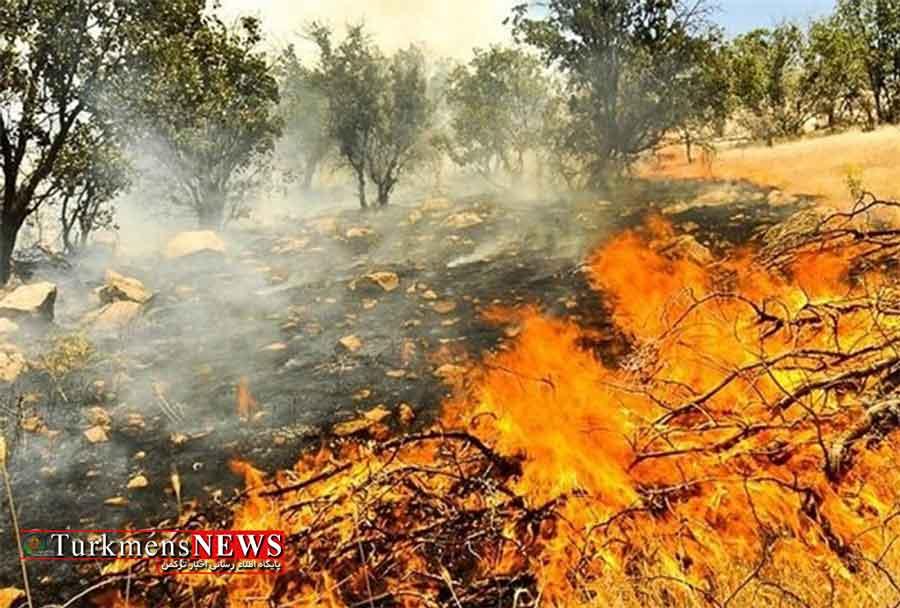 بیش از 100 هکتار از اراضی مرتعی پارک ملی گلستان در آتش سوخت