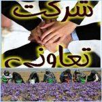روستایی گلستان 5 150x150 - ساماندهی تشکلهای زنان روستایی از اولویتهای تعاون روستایی گلستان است
