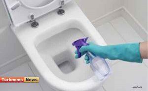 فرنگی 300x185 - توالت فرنگی را چگونه جرم گیری و تمیز کنیم؟