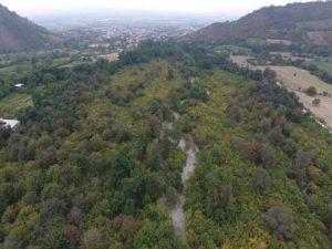 ملی 300x225 - ابلاغ مراتب ثبت ملی هفت اثر طبیعی به استاندار گلستان