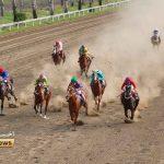 هفته هفدهم اسبدوانی 2 150x150 - مسابقات اسبدوانی گنبدکاووس به ایستگاه آخر رسید