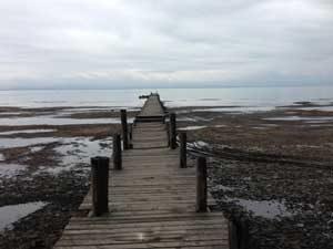 گرگان 6 300x225 - عدم احیای خلیج گرگان محیط زیست استان را در خطر نابودی قرار می دهد
