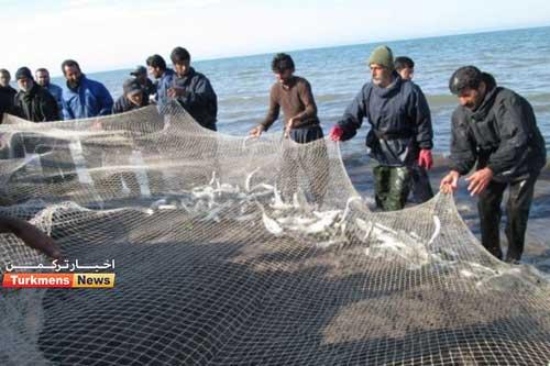 خزر 1 - امواج دریای خزر موجب افزایش قیمت ماهی شب عید در گلستان شد