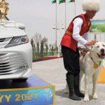آلابای ترکمنستان1 150x150 - روز آلابای در ترکمنستان تعطیل رسمی اعلام شد+تصاویر