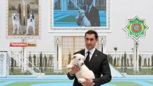 آلابای ترکمنستان4 300x169 - روز آلابای در ترکمنستان تعطیل رسمی اعلام شد+تصاویر