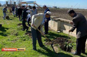 درختکاری گنبدکاووس 10 300x198 - مراسم روز درختکاری در گنبدکاووس برگزار شد