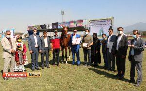 اسب علی آباد کتول 6 300x188 - دومین مسابقه ملی زیبایی آیینی اسب ترکمن در شهرستان علی آباد کتول برگزار شد