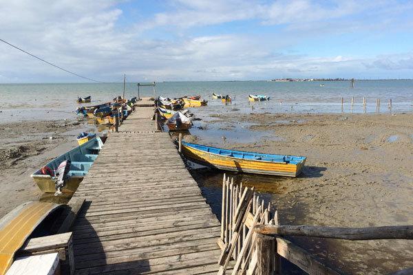بندرترکمن - ساماندهی ساحل بندرترکمن برای شنا