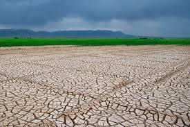 زراعی - 34 درصد کاهش بارندگی سال زراعی جاری نسبت به سال زراعی گذشته
