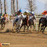هفته یازدهم اصلی 1 150x150 - از سرگیری تاخت اسبها در گلستان
