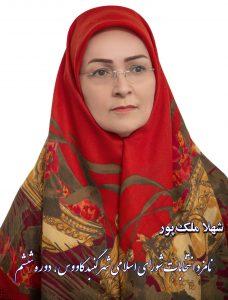 ملکپور ترکمن نیوز انتخابات 228x300 - توسعه متوازن و آبادانی شهر گنبدکاووس