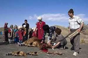 ترکمنستان ترکمن نیوز 300x197 - قربانی و مفتیِ عقل