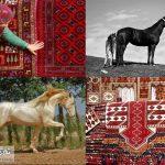 آماده 1024 1 150x150 - اسب و فرش ترکمن قابلیت ثبت جهانی دارد