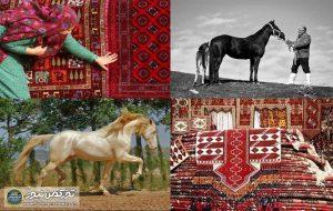 آماده 1024 1 300x190 - اسب و فرش ترکمن قابلیت ثبت جهانی دارد