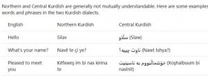 زبان کردی 300x114 - مایکروسافت زبان کردی را به نرم افزارها و اپلیکیشنهای خود افزود