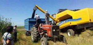با افزایش مراکز خرید اتلاف وقت کشاورزان نسبت سال قبل کاهش یافت