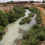 مرگ گرگانرود فاجعه زیست محیطی (3)