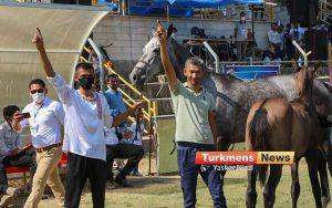 زیبایی اسب اصیل ترکمن 4 300x188 - مسابقات ملی زیبایی آیینی اسب اصیل ترکمن به میزبانی علی آباد برگزار شد+عکس
