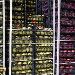 150x150 - ترکیه 2 میلیارد 260 میلیون دلار میوه و گوک اونوم ساتدی