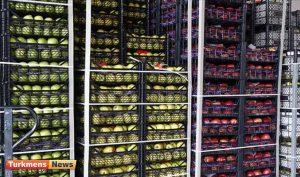 300x177 - ترکیه 2 میلیارد 260 میلیون دلار میوه و گوک اونوم ساتدی