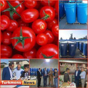 کوچکی 1 300x300 - فروش رب استحصالی از خرید حمایتی گوجه فرنگی در بورس