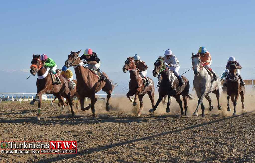 رقابتهای هفته ششم کورس سوارکاری پاییزه در آق قلا برگزار می شود