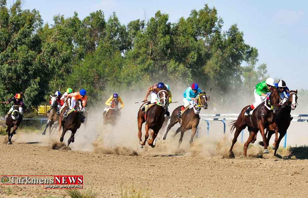 هفته ششم مسابقات اسبدوانی کورس پاییزه آق قلا برگزار شد+عکس