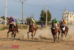 هفته نهم کورس سوارکاری تابستانه در بندر ترکمن جمعه 26 مرداد برگزارمی شود