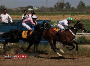 دوم 300x219 - هفته دوم مسابقات اسبدوانی کورس تابستان بندرترکمن برگزار شد+عکس