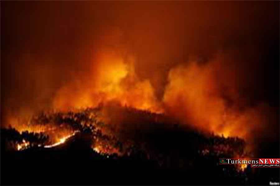 وسعت آتش سوزی پارک ملی گلستان هنوز مشخص نیست