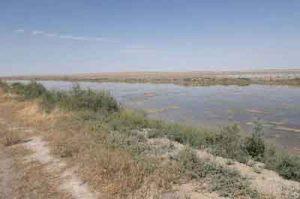 ید گلستان 300x199 - پساب خطرناک ید گلستان به اعماق زمین تزریق میشود