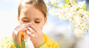 علائم آلرژی بهاره - گزینه های غذایی مناسب برای کنترل علائم آلرژی بهاره