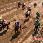 اول هفته نوزدهم 2 150x150 - هفته پایانی کورس اسبدوانی گنبدکاووس ۲۴ و ۲۵ اردیبهشت ماه برگزار می شود