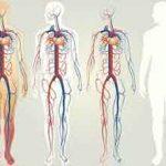 """مپس 150x150 - گوگل برای بدن انسان """"گوگل مپس"""" می سازد"""
