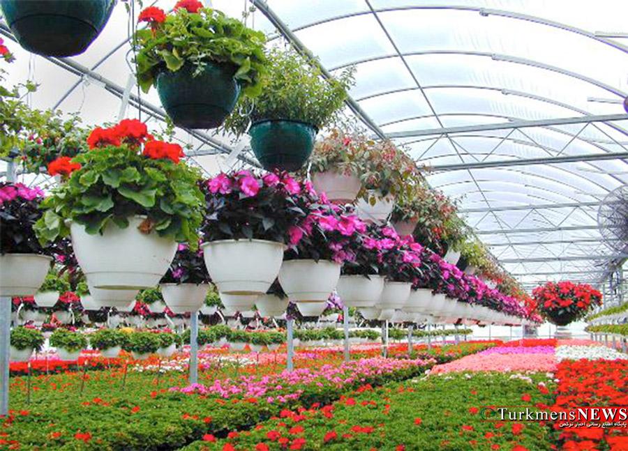 ۸ میلیون گل و گیاه زینتی در گلستان تولید شد