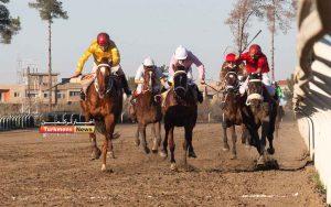 1 246 300x188 - روز دوم هفته نهم مسابقات اسبدوانی زمستانه گنبدکاووس برگزار شد+عکس