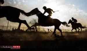 اسبهای ایران به زنجيره بين المللى متصل شدند