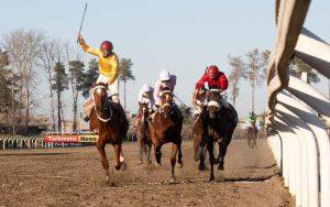 2 163 300x188 - روز دوم هفته نهم مسابقات اسبدوانی زمستانه گنبدکاووس برگزار شد+عکس